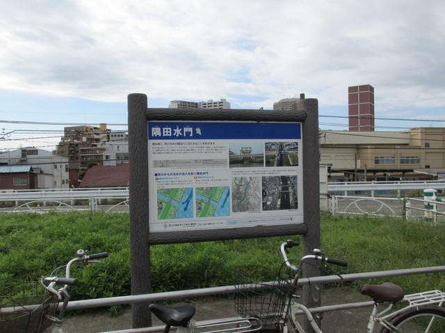 ④隅田水門.JPG