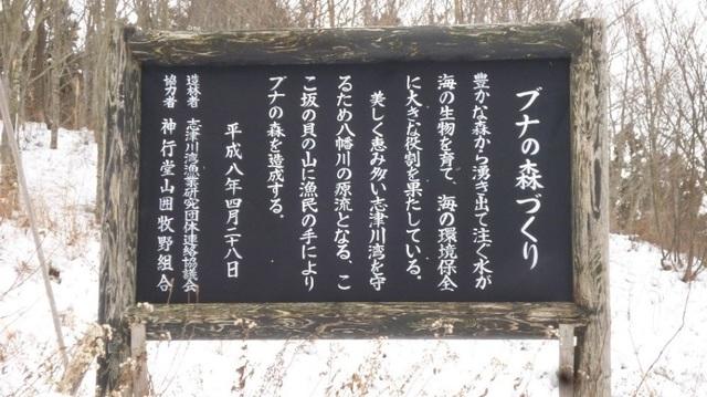 小幡先生_写真1-1.jpg