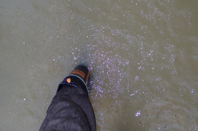 Yajima写真1洪水調整池0220180629.jpg
