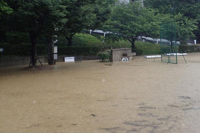 Yajima写真2洪水調整池0120180629.jpg